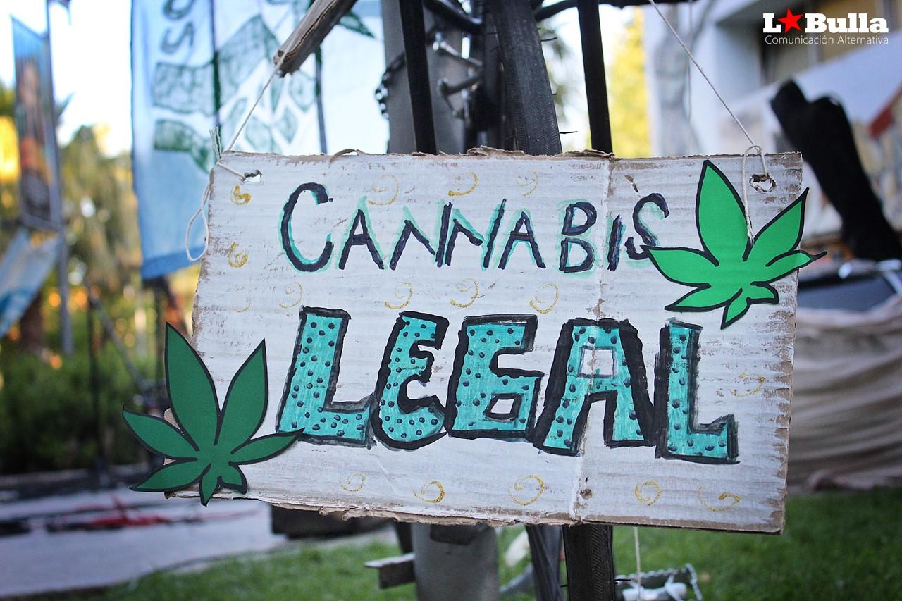 #despenalización de la #marihuana